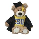 Graduate Bear Stitchez